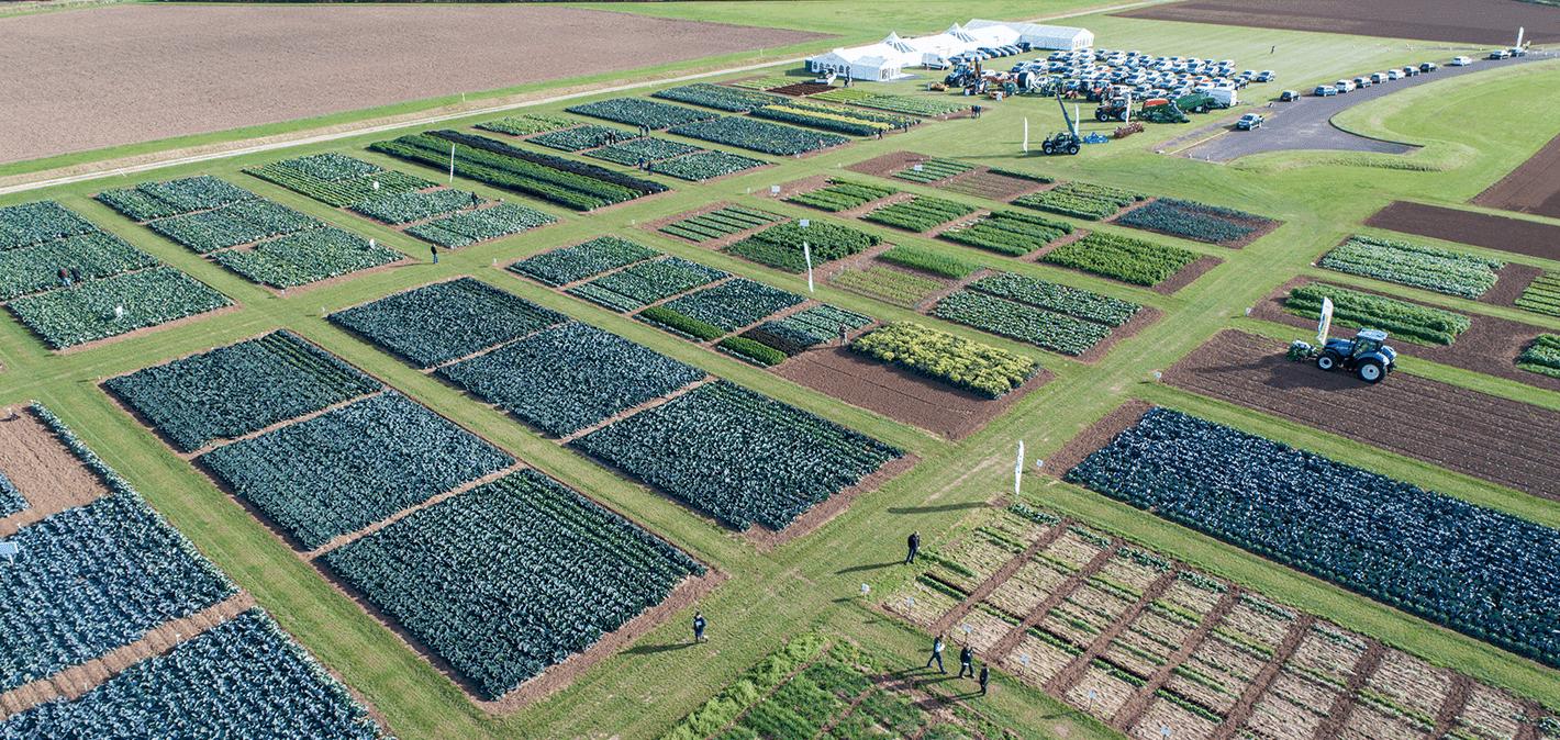 Trials field